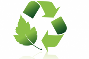global_sustainability-green-integration