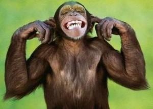 monkeymind